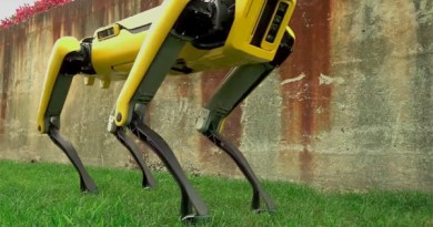 robot-pes-boston-dynamics-600x380